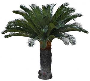 Mr PlantCycas palm - Konstväxt - 100 cm