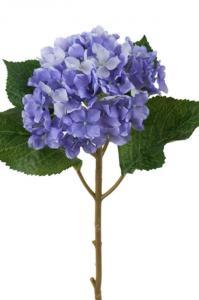 Mr PlantHortensia - Blå sidenblomma - Ø12 cm