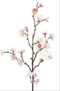 Mr PlantKörsbärskvist - Rosa - 60 cm