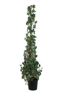 Murgröna - Konstväxt - 180 cm