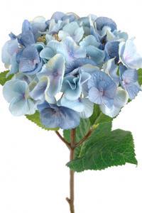 Mr PlantHortensia - Blå sidenblomma - Ø18 cm