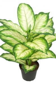 Mr PlantPrickblad - Konstväxt - 40 cm