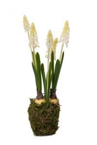 Pärlhyacint - Vit - Konstväxt - 25 cm