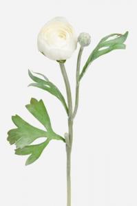 Mr PlantRanunkel - Vit - 34 cm