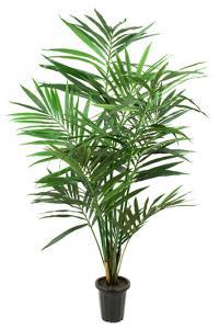 Mr PlantKentia palm - Konstväxt - 150 cm