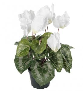 Mr PlantCyklamen Vit - Konstväxt - 32 cm