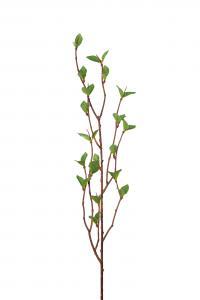 Mr Plant Björk - Konstgjord kvist - 50cm