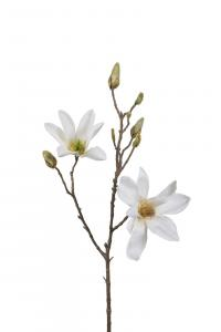 Magnolia - Vit - 70 cm - www.frokenfraken.se