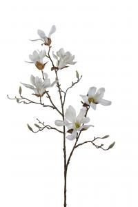 Magnolia - Vit - 100 cm - www.frokenfraken.se