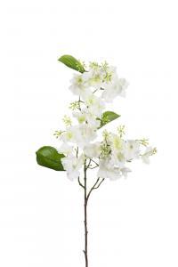 Mr Plant Hortensia - Vit - 90 cm - www.frokenfraken.se