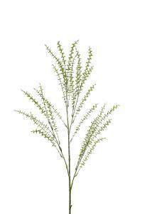 Mr Plant Eucalyptus - Grön - 100 cm