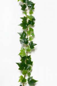 Murgröna - Grön - 180 cm - www.frokenfraken.se