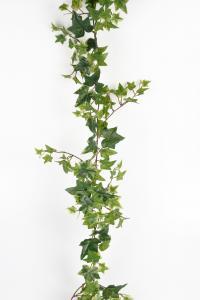 Murgröna - Grön - 120 cm - www.frokenfraken.se