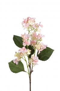 Mr Plant Hortensia - Rosa - 60 cm - www.frokenfraken.se