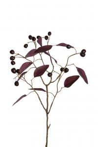 Mr Plant Bärkvist - - 65 cm - www.frokenfraken.se