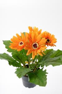 Gerbera - Orange - 30 cm - www.frokenfraken.se