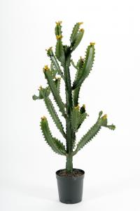 Kaktus - Grön - 97 cm - www.frokenfraken.se