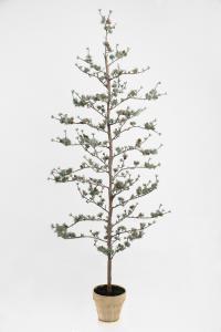Lärkträd - - 180 cm - www.frokenfraken.se