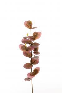 Eucalyptus - Lila - 40 cm - www.frokenfraken.se