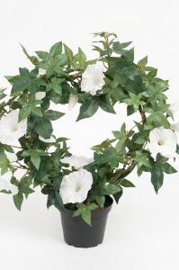 Blomma för dagen - Vit - 35 cm - www.frokenfraken.se