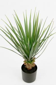 Yucca - Grön - 58 cm - www.frokenfraken.se
