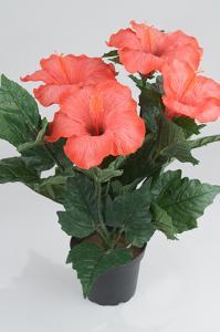 Hibiscus - Röd - 36 cm - www.frokenfraken.se