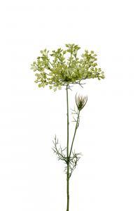 Allium - Grön - 70 cm - www.frokenfraken.se