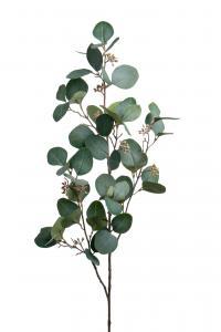 Eucalyptus med bär - Grön - 100 cm - www.frokenfraken.se