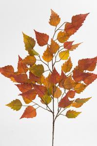 Mr Plant Höstkvist - Orange - 65 cm