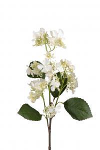 Mr Plant Hortensia - Vit - 60 cm - www.frokenfraken.se