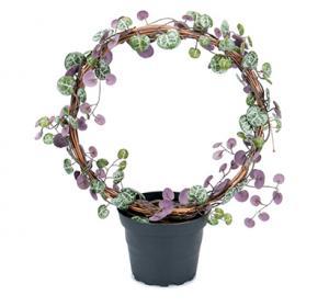 Mr Plant Hjärtan på tråd - Båge - Konstväxt - 28 cm