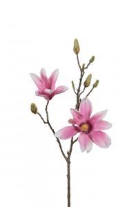 Magnolia - Rosa - 70 cm - www.frokenfraken.se