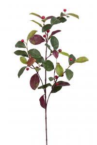 Mr Plant Vaktelbär - Grön - 60 cm