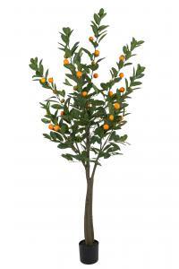 Citrus - Grön - 180 cm - www.frokenfraken.se