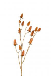 Tistel - Orange - 95 cm - www.frokenfraken.se
