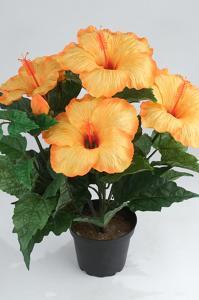 Hibiscus - Orange - 36 cm - www.frokenfraken.se