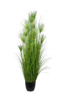 Papyrus - Grön - 180 cm - www.frokenfraken.se
