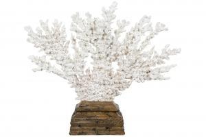 Korall - Dekoration - Vit - 23 x 19 x 28 cm - www.frokenfraken.se