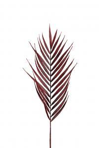 Palmblad - Röd - 90 cm - www.frokenfraken.se