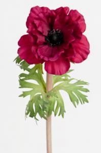 Anemone - Lila - 45 cm - www.frokenfraken.se