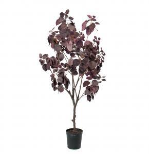 Mr Plant Cotinus - Konstväxt - 140 cm