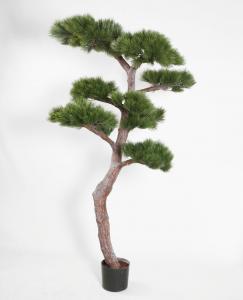 Tall - Pine Tree - 195 cm - www.frokenfraken.se