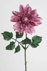 Mr Plant Dahlia - Lila - 45 cm