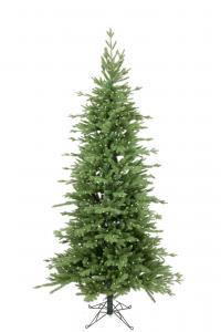 Mr Plant Gran Victoria slim 300 lp - - 180 cm