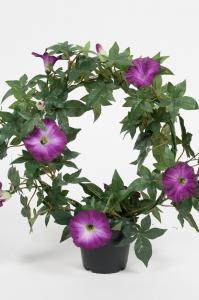 Blomma för dagen - Lila - 35 cm - www.frokenfraken.se