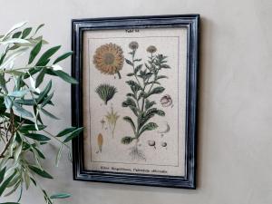 Tavla - Blomstermotiv - Med svart ram - 43 x 33 cm - www.frokenfraken.se