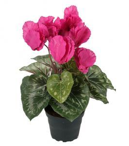 Mr Plant Cyklamen Cerise - Konstväxt - 32 cm
