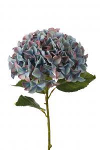 Hortensia - Blå - 110 cm - www.frokenfraken.se