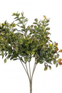 Mr Plant Lingonris bukett - Grön - 25 cm - www.frokenfraken.se