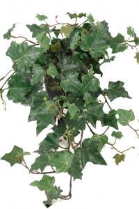 Mr Plant Murgröna - Konstväxt - 55 cm